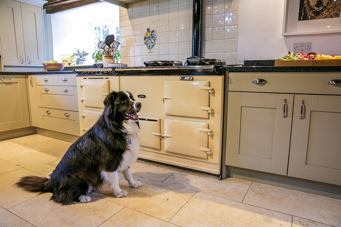 Aga-and-Mackintosh-Painted-Shaker